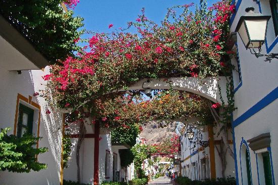 Om Gran Canaria